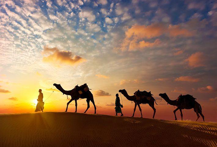 Evening Desert Safari rides and tours