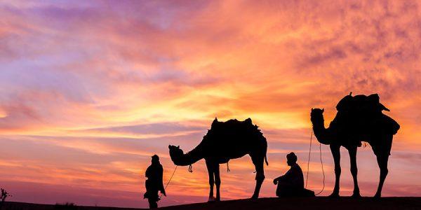 overnight-camel-riding-banner